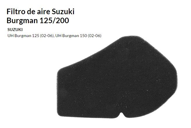 FILTRO AIRE SUZUKI BURGMAN 125 06