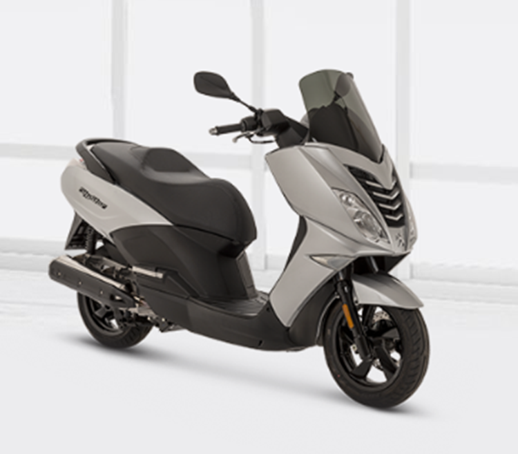 CICLOSCOOTER PEUGEOT CITYSTAR 50 2T