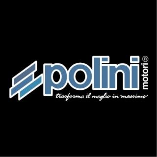 POLINI MOTORI S.P.A.